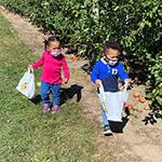 kids apple picking
